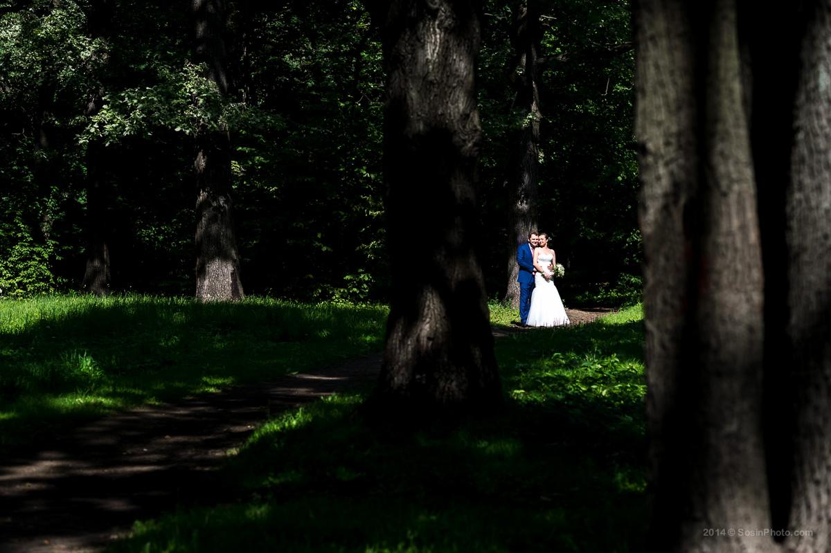 Жених и невеста Дубки